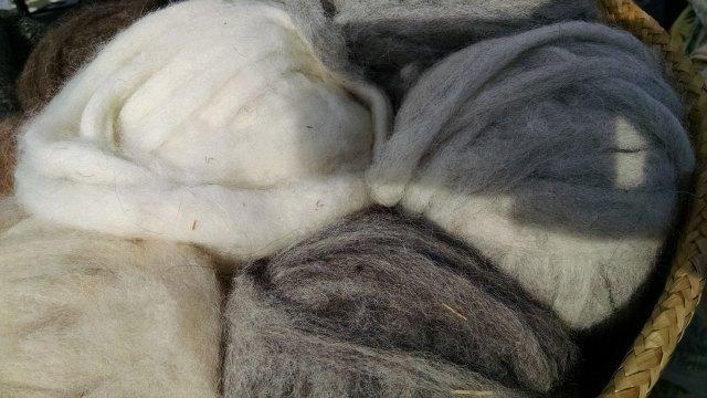 alpacatrax-alpaca-roving